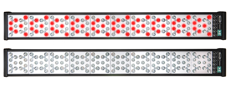Clearlight-Red-Light-Therapy-Combines-Red-Light-and-Near-Infrared