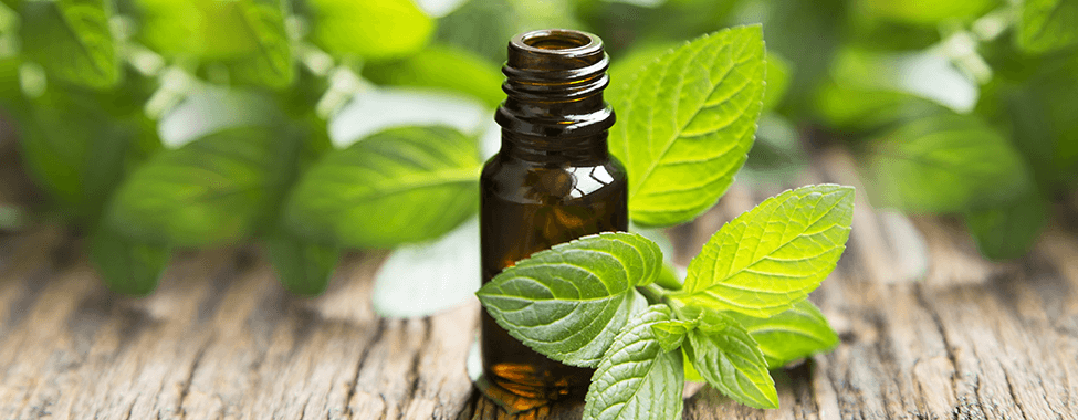 Peppermint-Essential-Oil-for-Sauna-Aromatherapy
