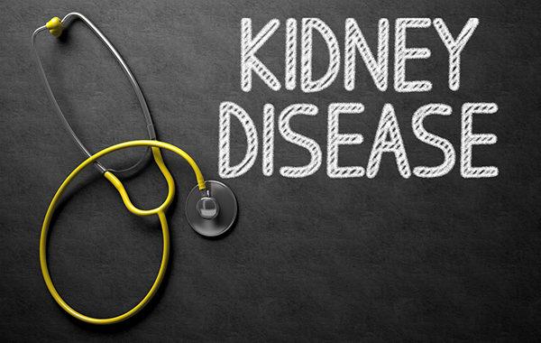 kidney-disease-600x380