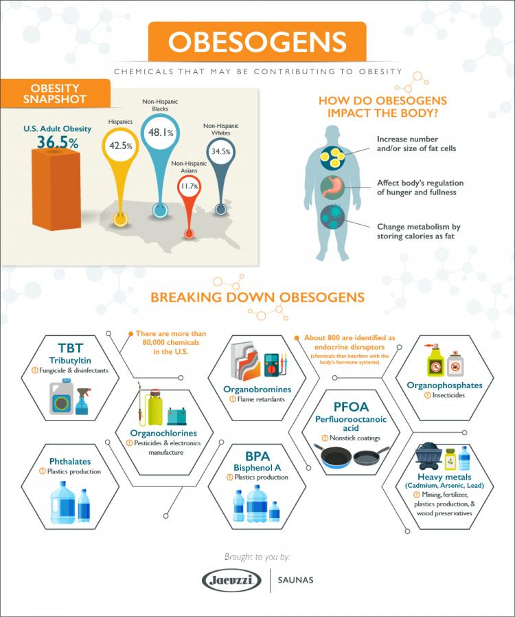 obesogens-infographic-jacuzzi-saunas