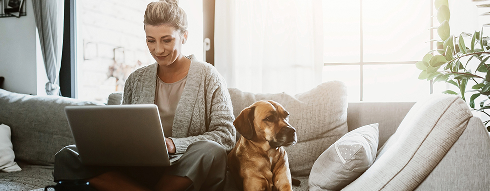 Woman Working from Home on Couch with Dog